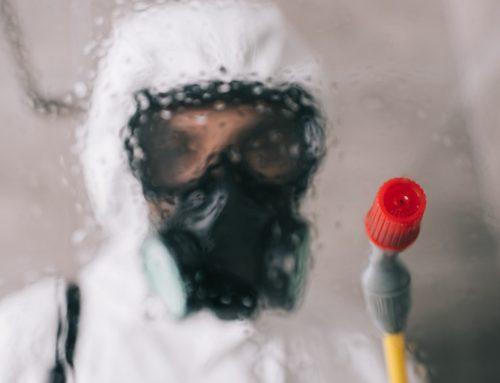 Metodos de control de plagas (parte 2)