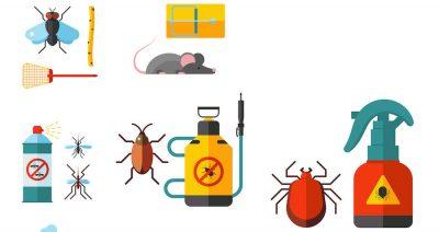 métodos de control de plagas en Panamá